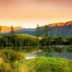 5 Jaw-Dropping New Zealand Scenic Routes to Drive