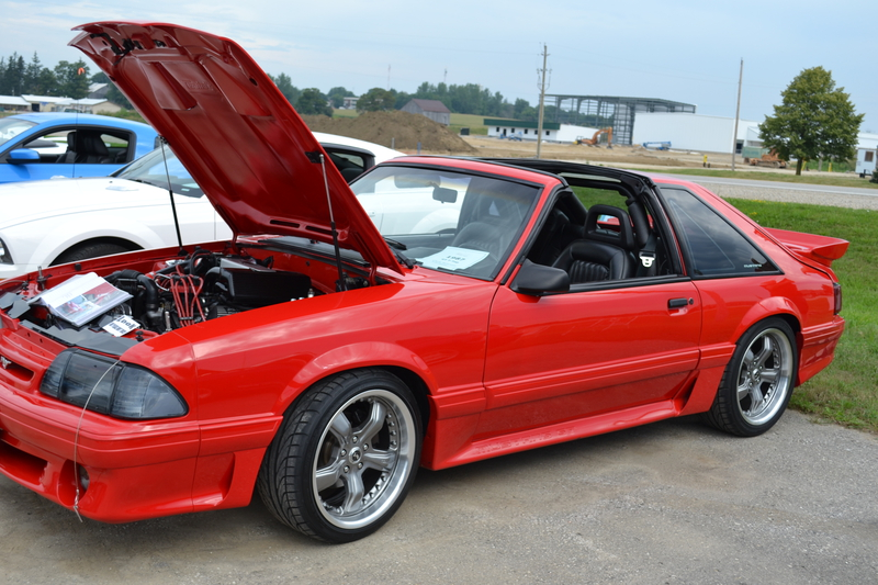 T Top Mustang >> Ford Mustang Gt T Top Picture 11 Reviews News Specs