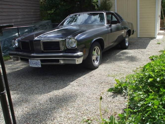 Oldsmobile cutlass salon coupe picture 4 reviews news for 1975 oldsmobile cutlass salon