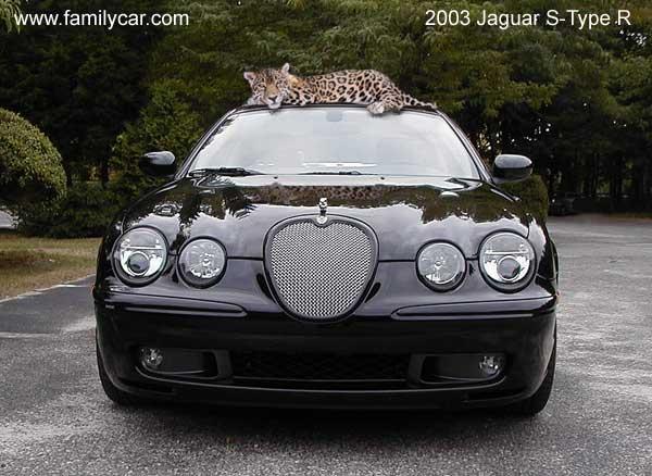 jaguar s type r photos reviews news specs buy car. Black Bedroom Furniture Sets. Home Design Ideas