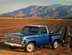 Chevrolet C-10 Cheyenne Step side