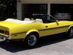 Ford Mustang 351 Ram Air conv