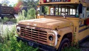 Ford School Bus