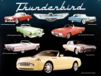 Ford Thunderbirds
