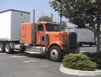 Freightliner Conventional