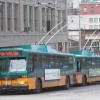 Gillig Trolley Bus